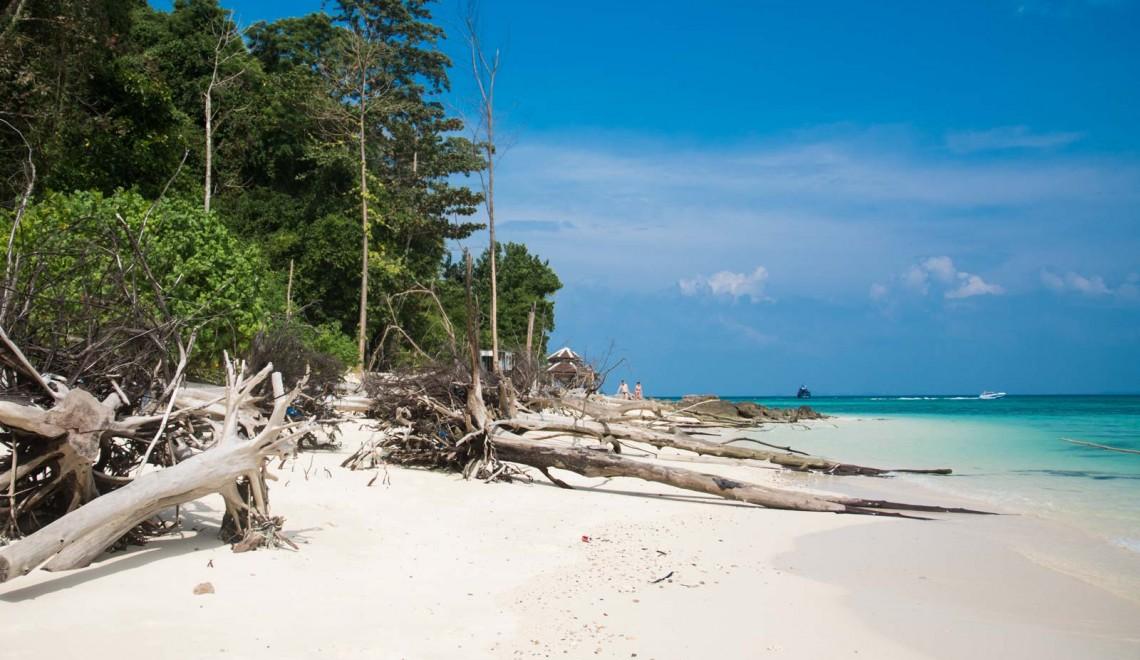 Bamboo Island, il paradiso per lo snorkeling