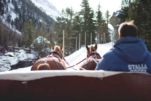giro-carrozza-cavalli-svizzera