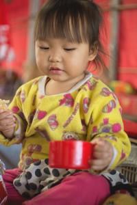 tribu-hmong